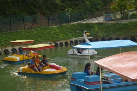 Refarm Pedal Boat